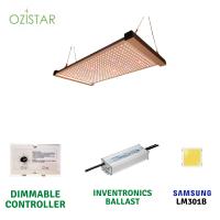 OziStar Quantum Board Led 240w +UV/IR FULL SPECTRUM