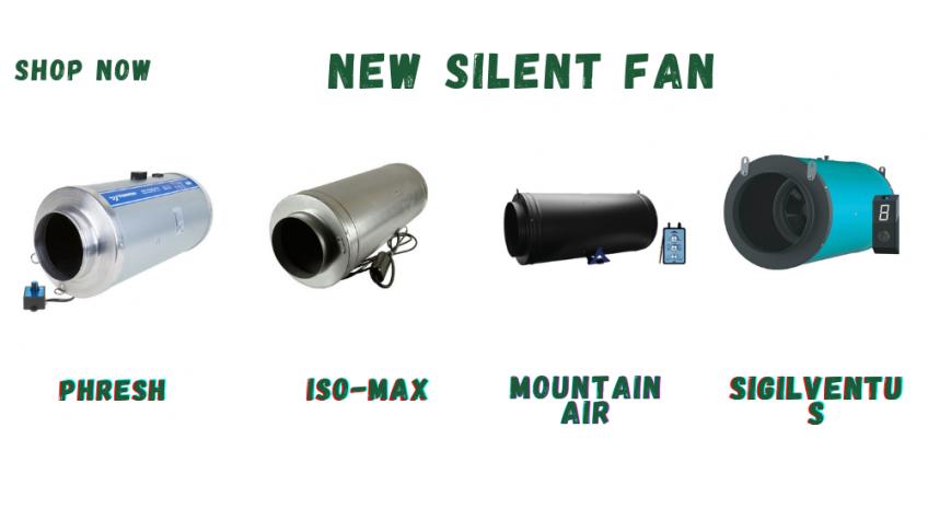 Silent Fans