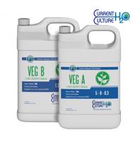 CURRENT CULTURE  VEG A+B 3.8L