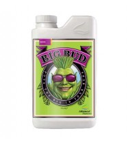 Advanced nutrient Big Bud 1lt