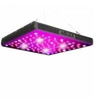 AGLEX LED LIGHT 2000W